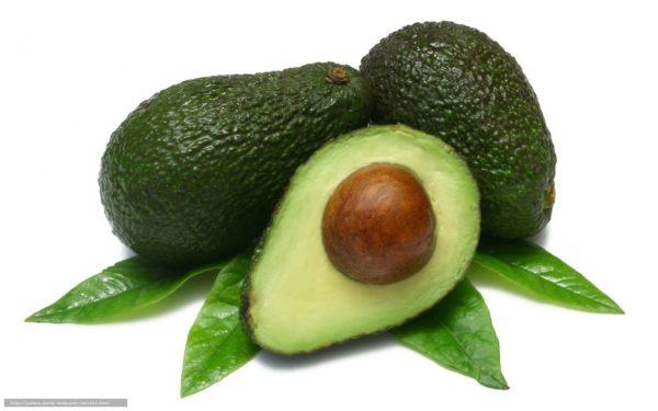 Buy Pear / Avocado Leaves