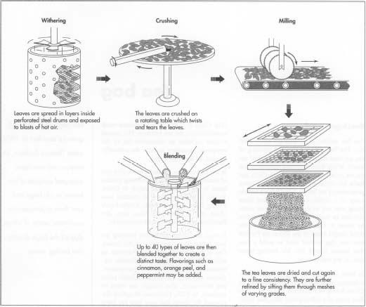 Tea Bag making process